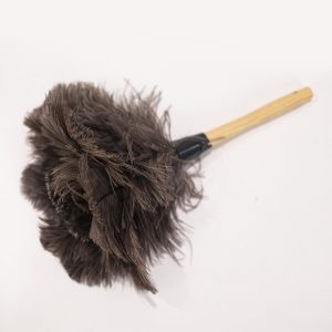 Feather Duster Prop Rental