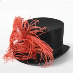 Circus Top Hat with red Feather